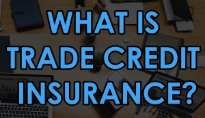 What is Trade Credit Insurance? | Niche Trade Credit Sydney