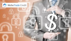 Three Reasons to Have Trade Credit Insurance | Niche Trade Credit Sydney