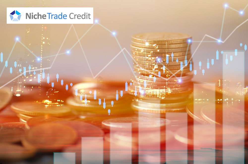 What is Trade Credit Insurance and Why Should You Care? | Niche Trade Credit Sydney