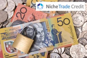 How to Protect Your Business from Bad Debts | Niche Trade Credit Sydney