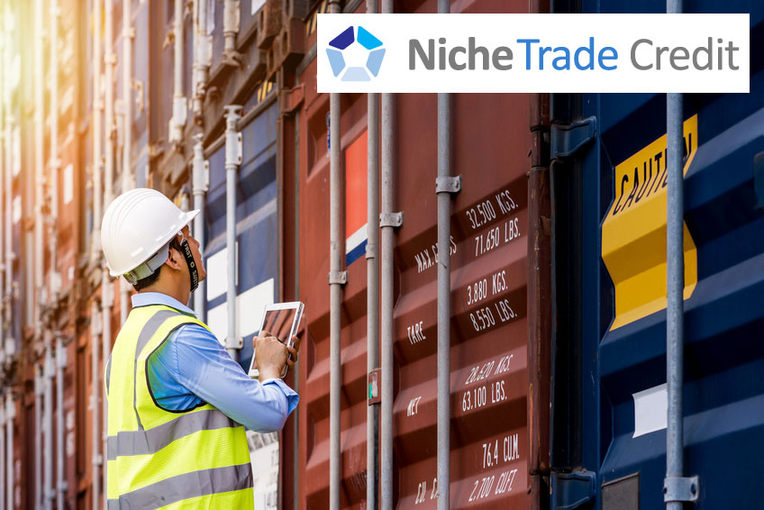 What Does Export Insurance Cover? | Niche Trade Credit Sydney