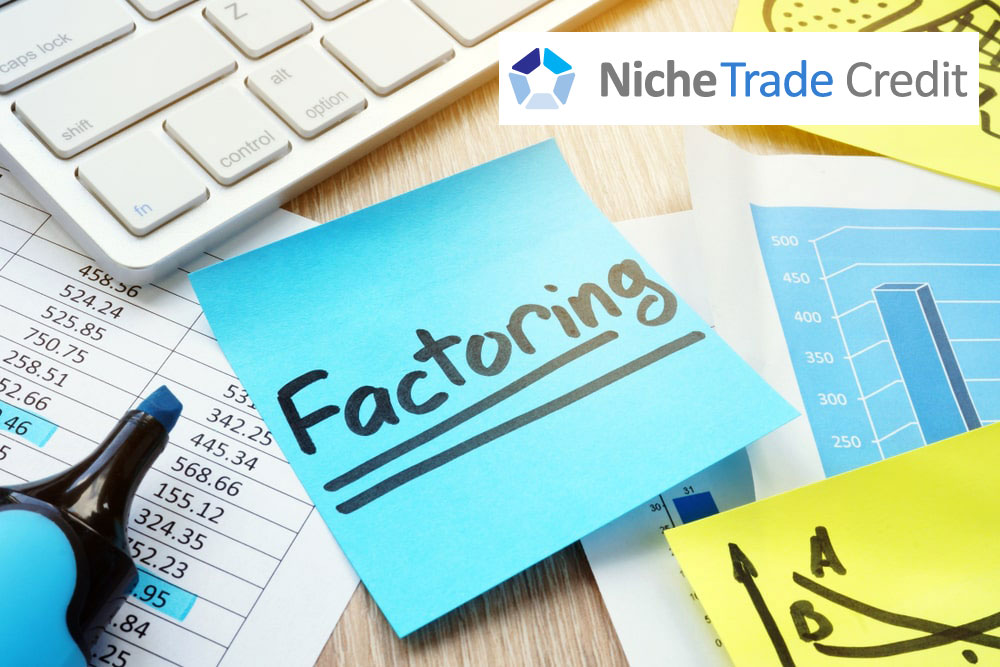 Trade Credit Insurance Vs. Factoring | Niche Trade Credit Sydney