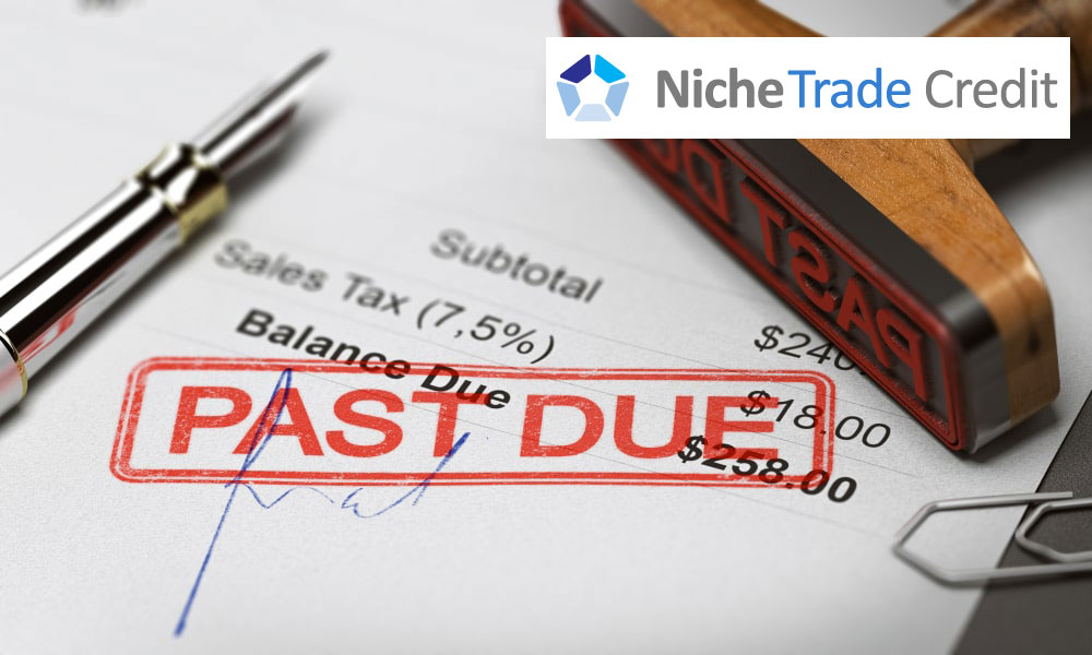 Credit Insurance Vs. Debt Protection: What's The Difference? | Niche Trade Credit Sydney