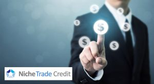 What is Structured Trade Credit Insurance? | Niche Trade Credit Sydney