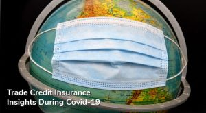 Trade Credit Insurance Insights During Covid-19 | Niche Trade Credit Sydney